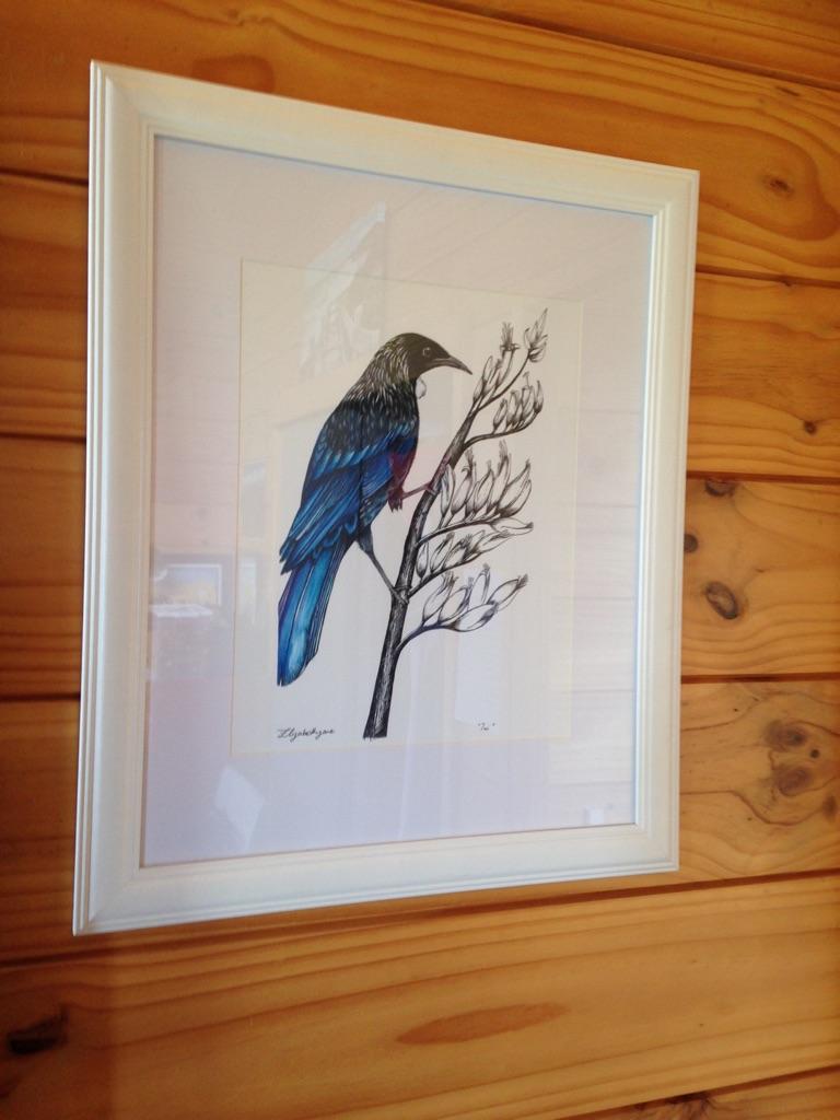 """""""Tui"""" NZ Native Bird"""