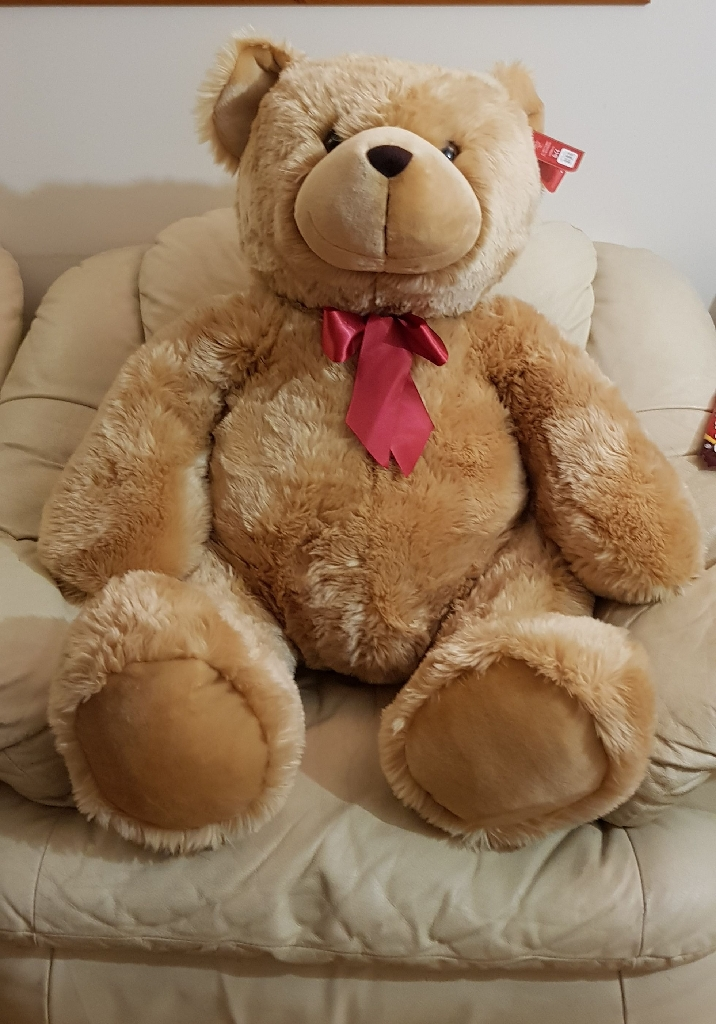 Brand New  Large brown teddy bear big size