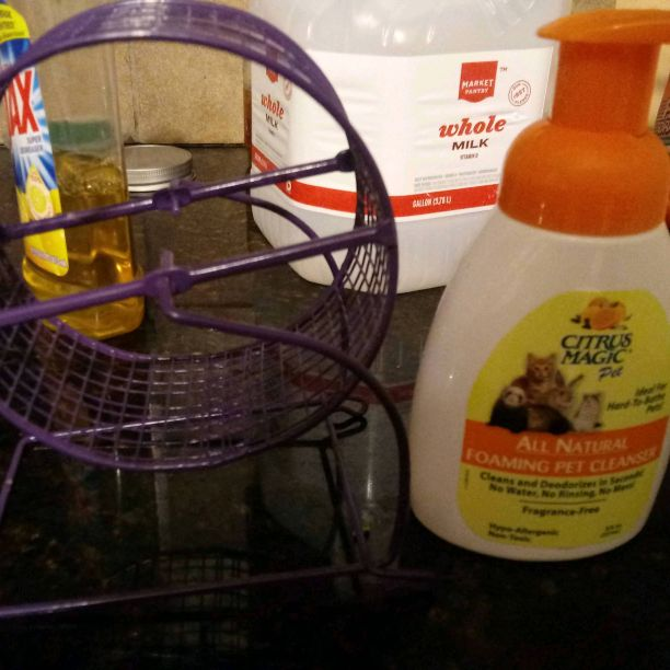 Hamster wheel and pet foaming cleanser