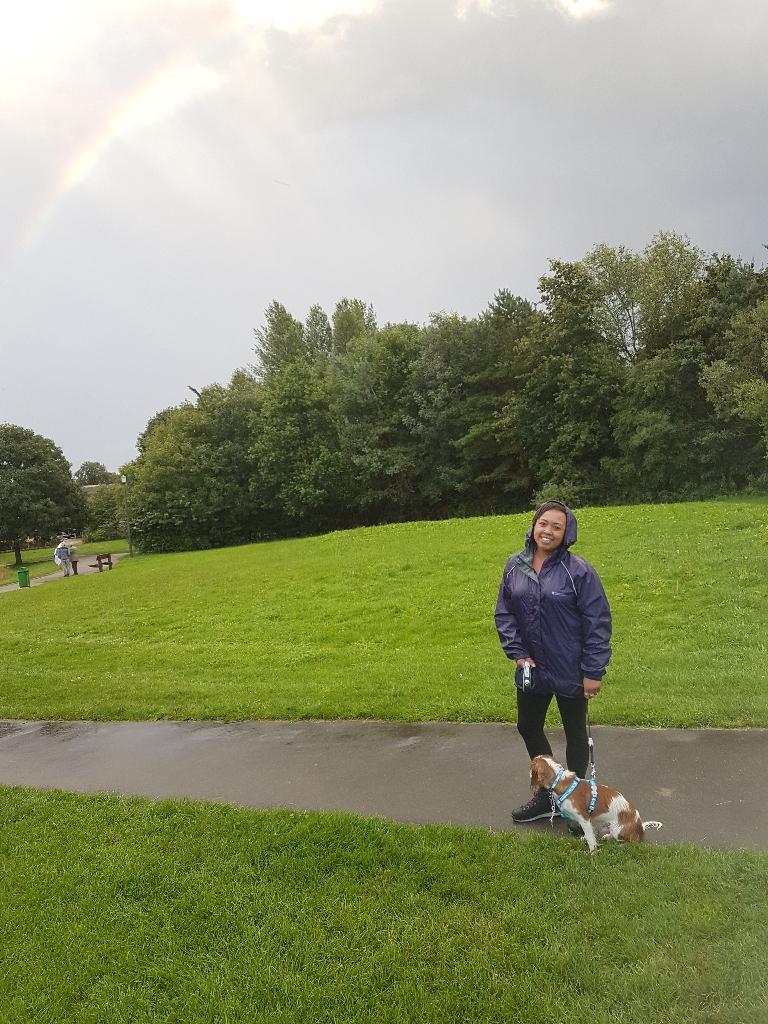 Tin's dog walking & pet care