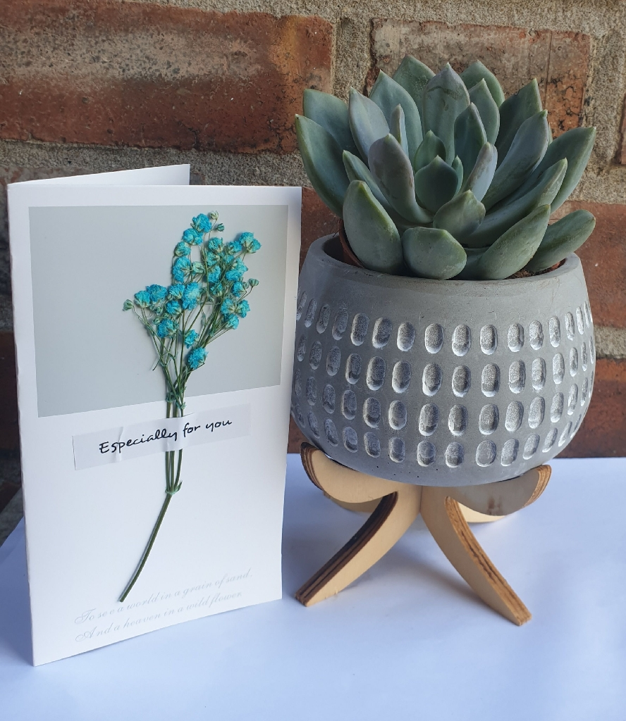 Ceramic Pots with a Card Message