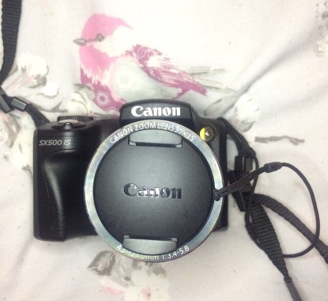 Canon SX500 IS Camera