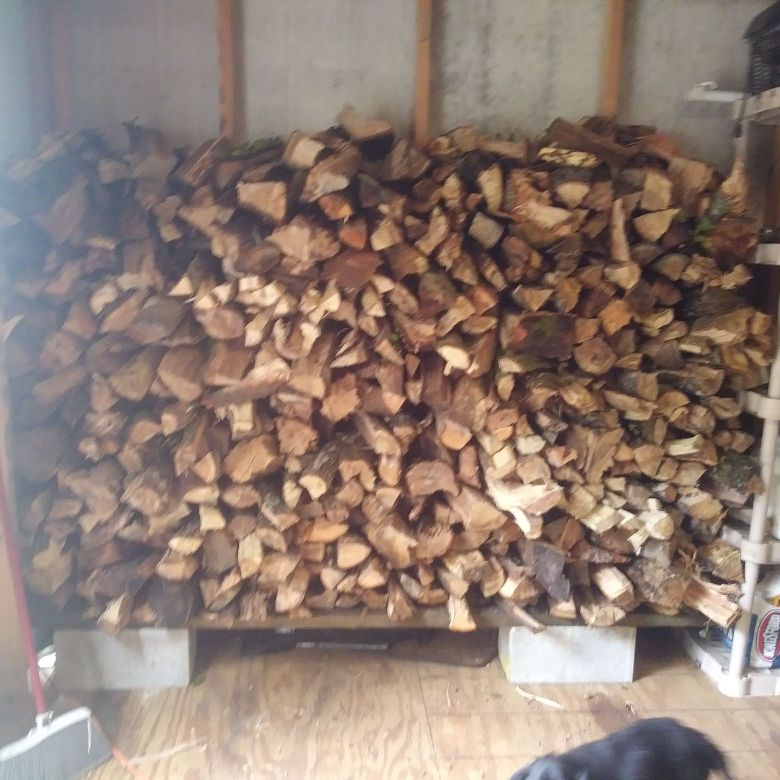 Spilt firewood