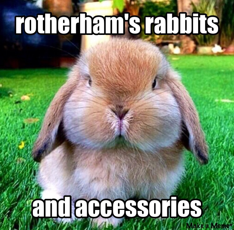 Rotherham's R.