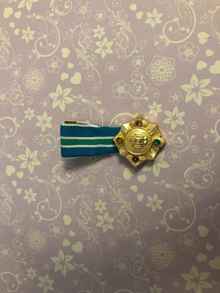 Disney medal pin