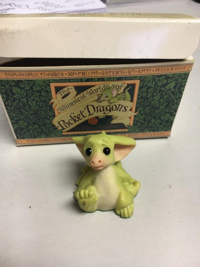 Loving Home Needed - Pocket Dragons