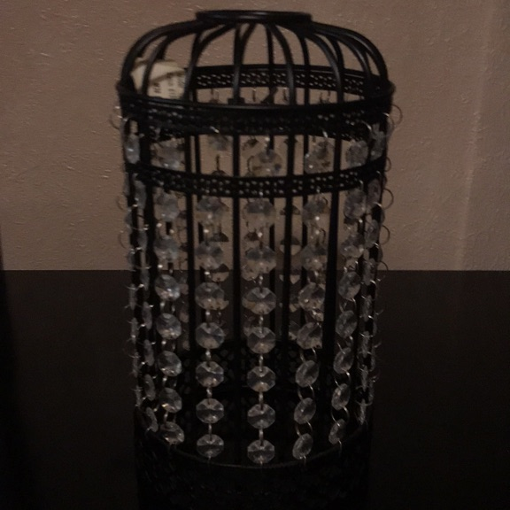 Light shade bird cage