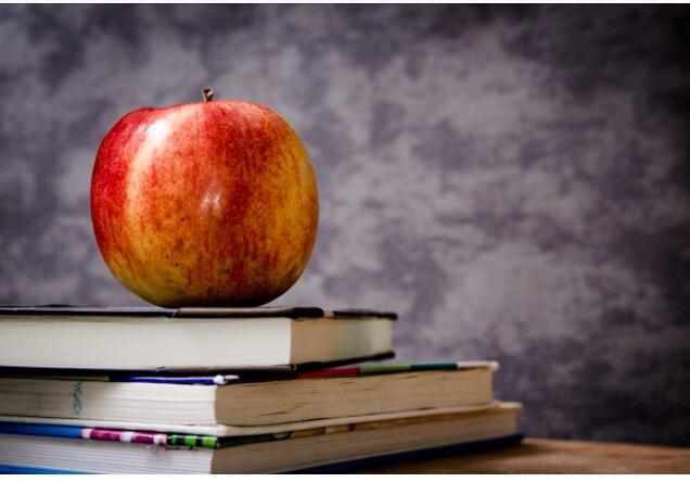 English tuition KS1-GCSE/A level