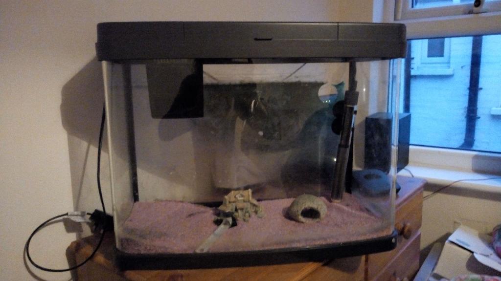 (Love Fish) panarama fish tank