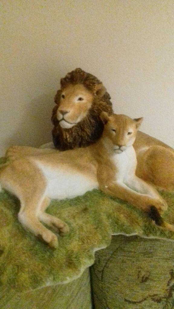 Sherratt and Simpson Lion & Lioness
