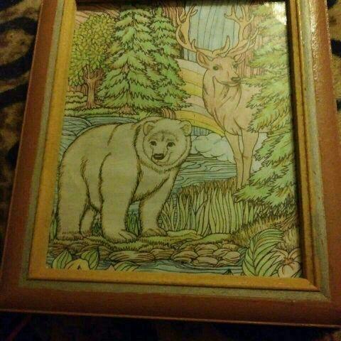 Bear framed picture