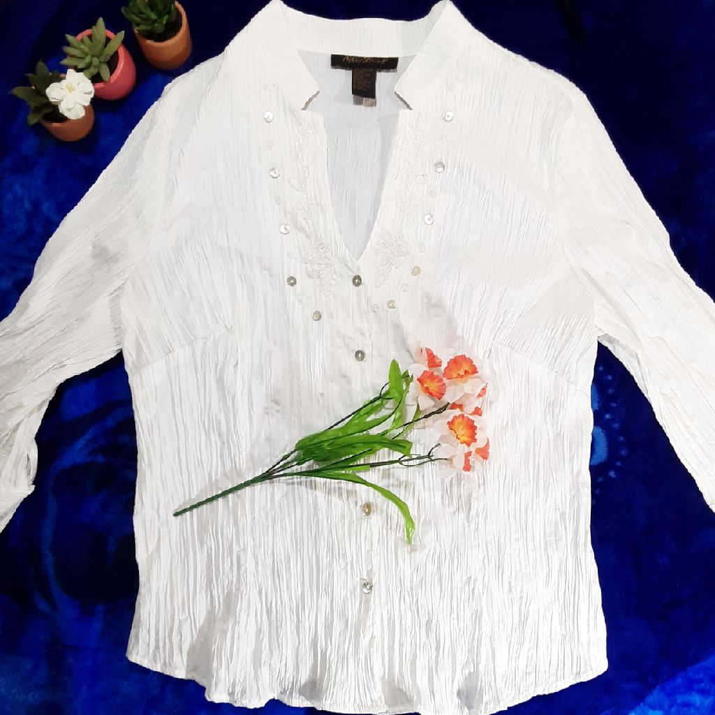 Ladies Plus Size 3X Ashley Steward white Spring Blouse. Will ship.