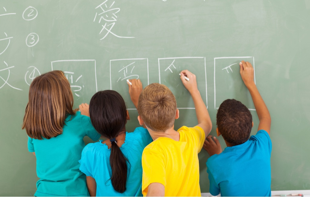 Private primary tutor (Years 1 - 6)