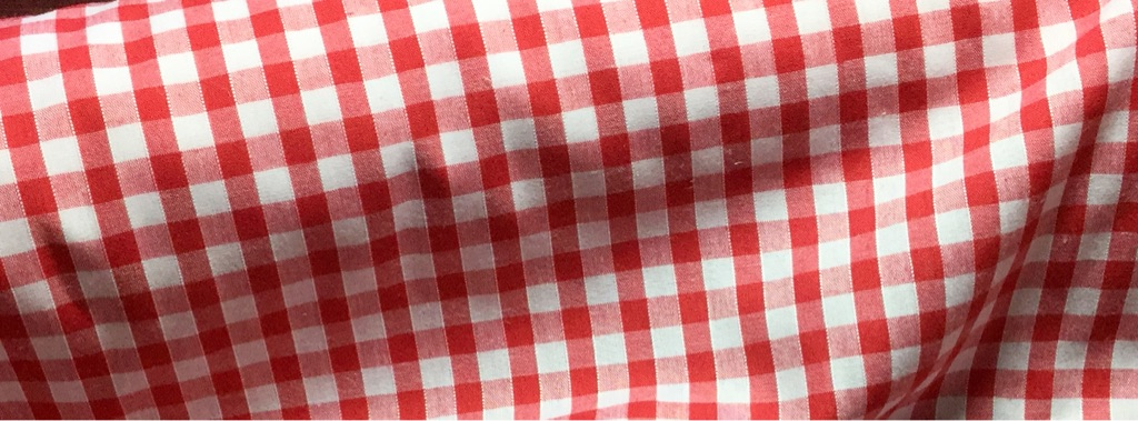 Gingham fabric RED