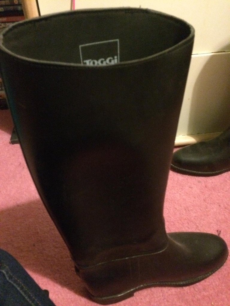 Equine / horse riding boots
