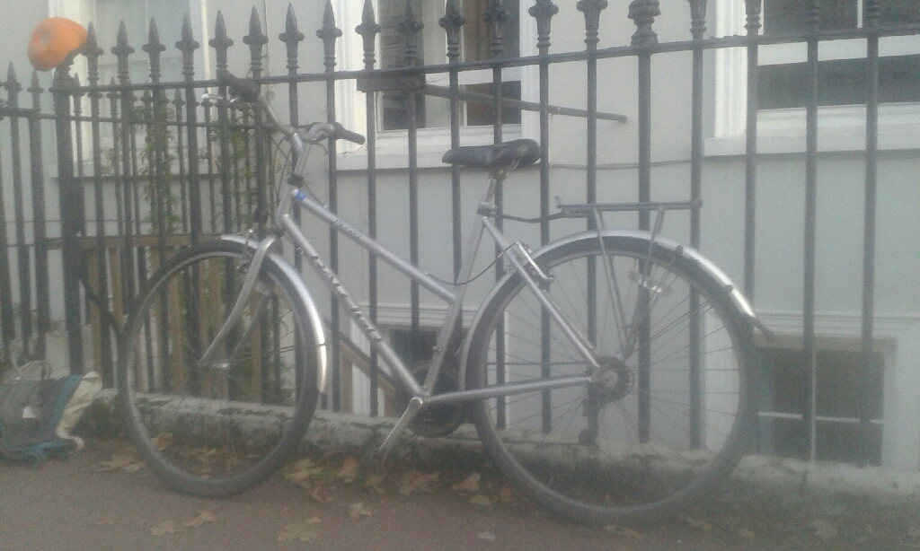 Raleigh Pioneer Women's Bike (secondhand)