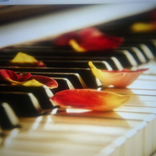 Piano Lessons - Belfast
