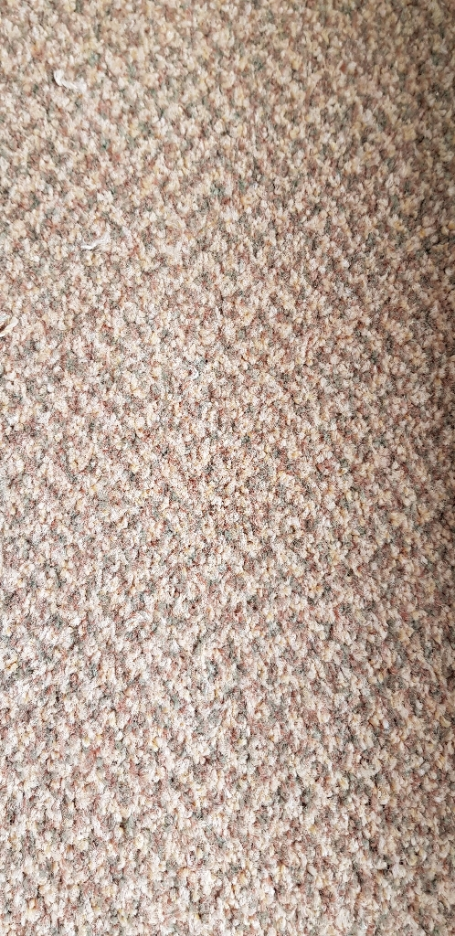 Room sized carpet 2.9x3m