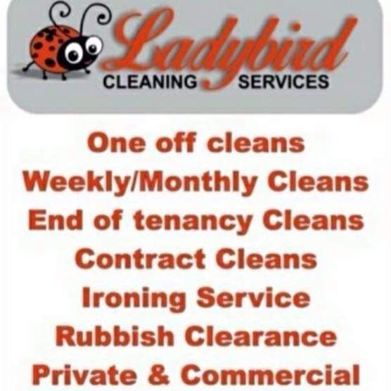 Ladybird cleaning services