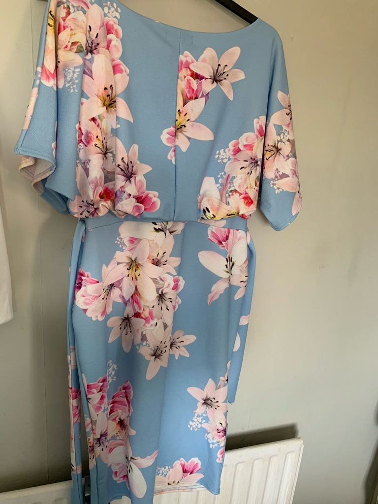Pale Blue Floral Print Batwing Dress