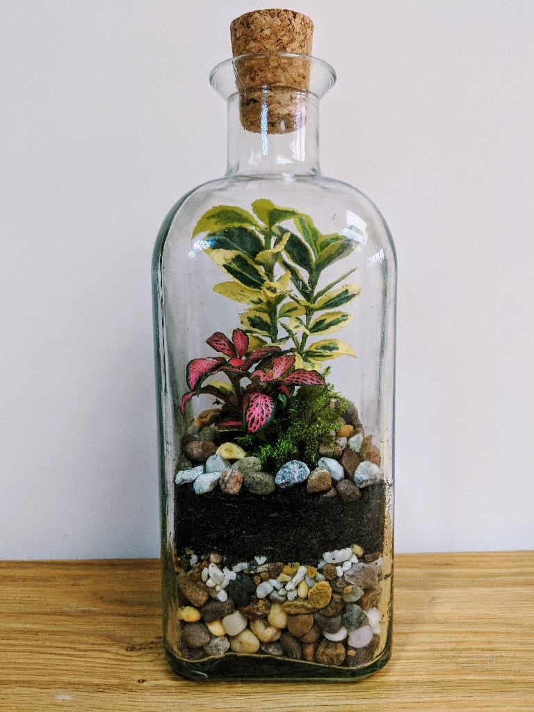 Handmade vintage closed terrarium
