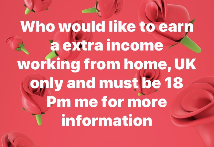 Who would like to earn extra income