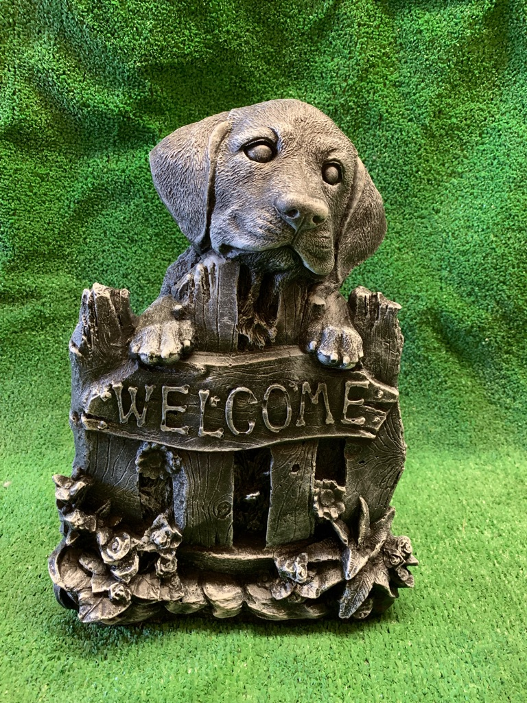 Concrete welcome dog