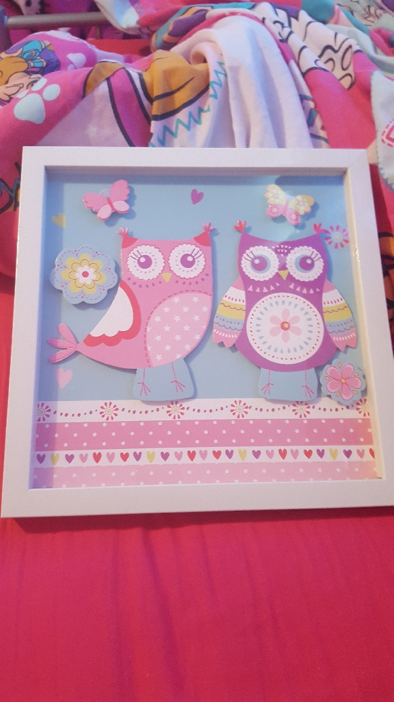 Owl rug and picture frame
