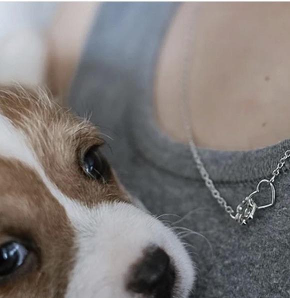 Pawz necklaces