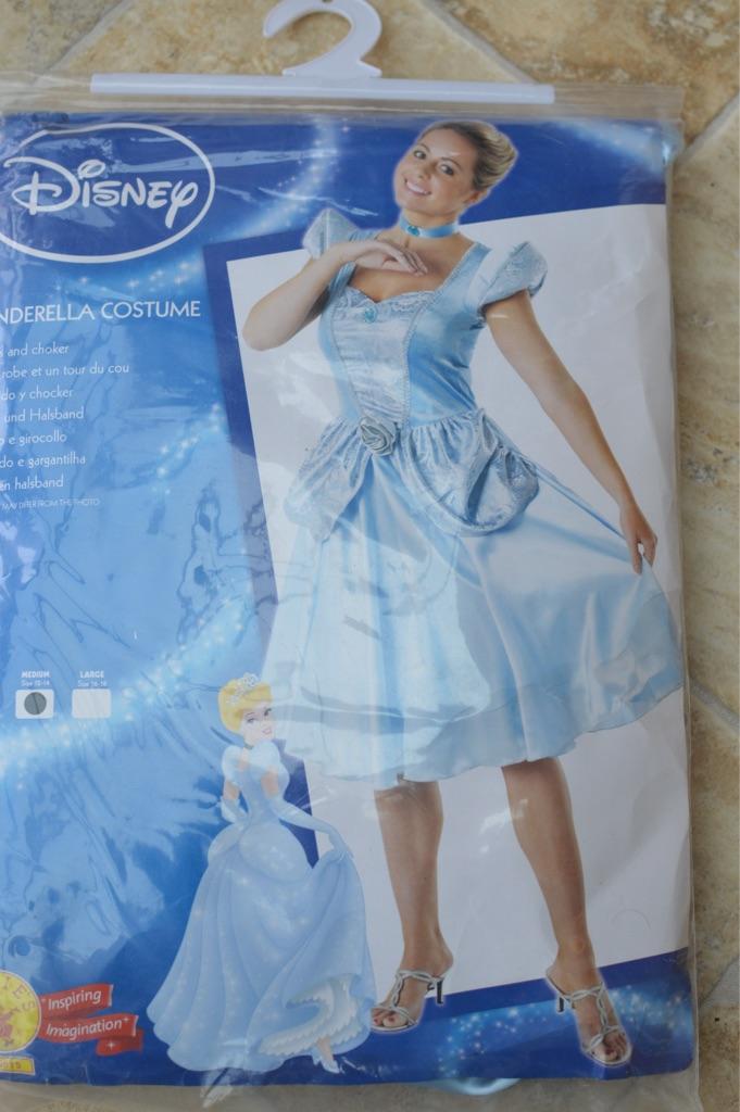 Adult Cinderella Fancy Dress Costume