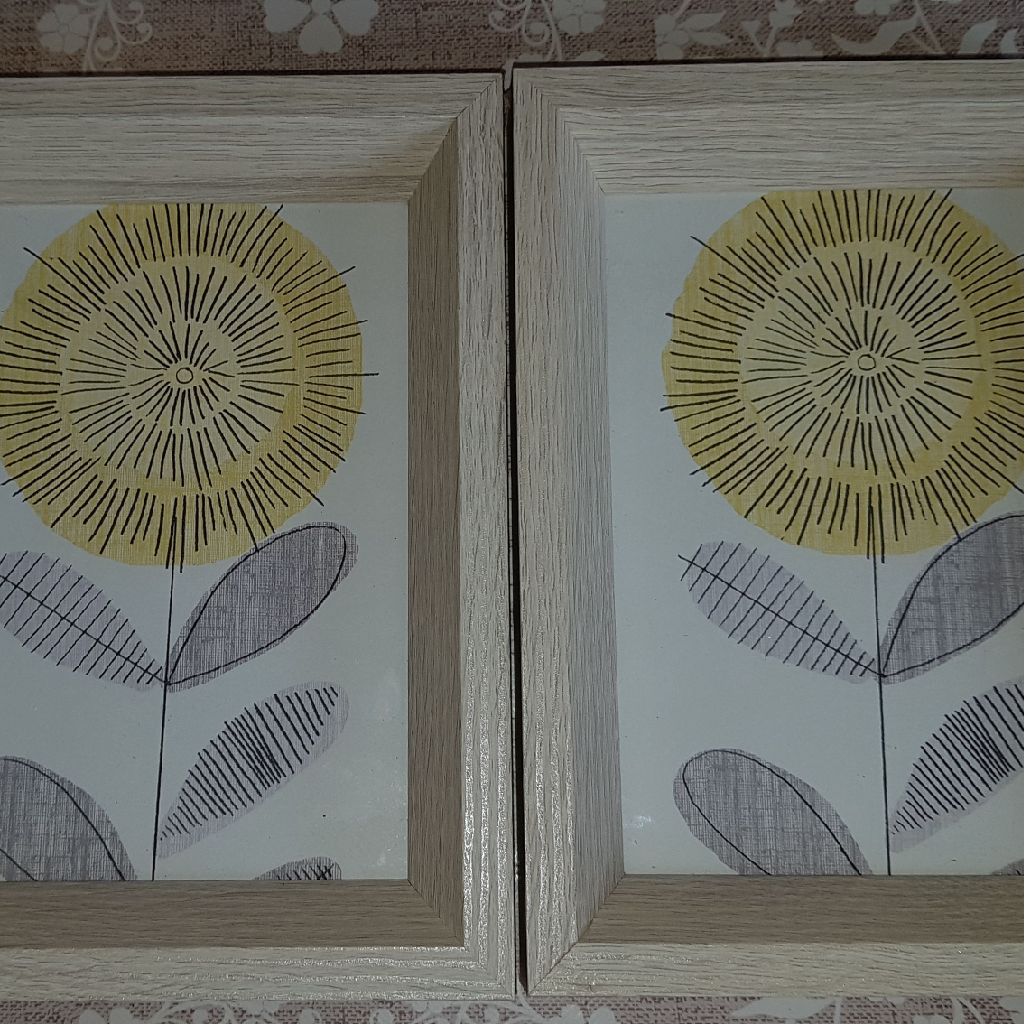 Pair of framed pictures