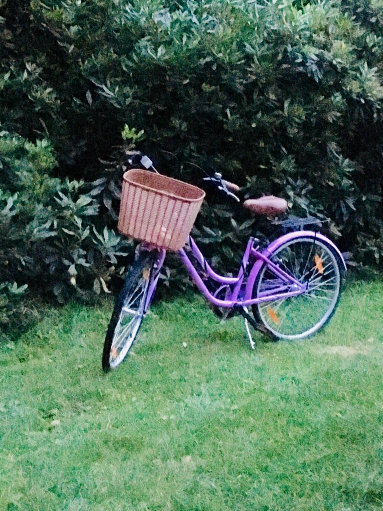 Ladies pink vintage bike with basket
