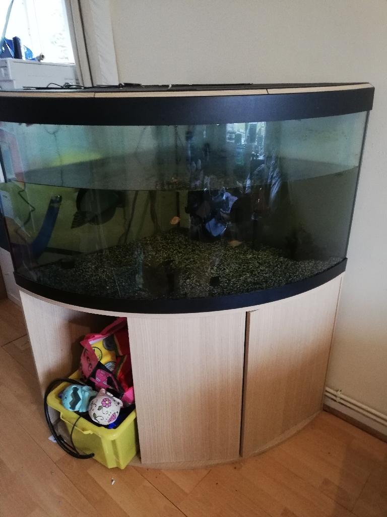 Fluvial 350 litre fish tank