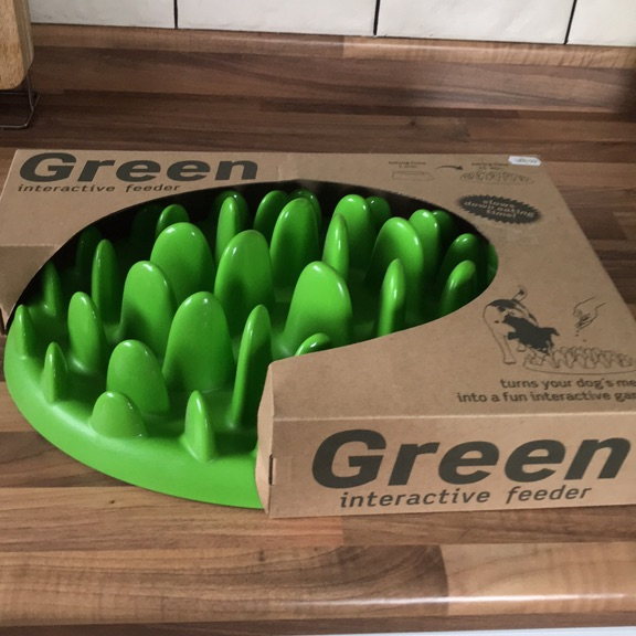 Green Interactive Feeder