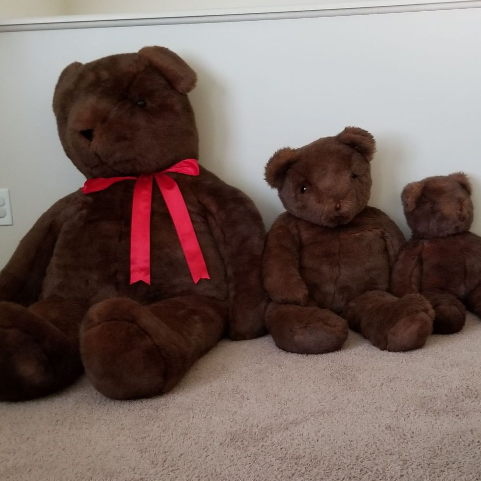 Bear bundle