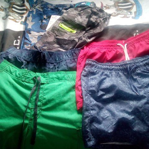 Shorts/swimwear