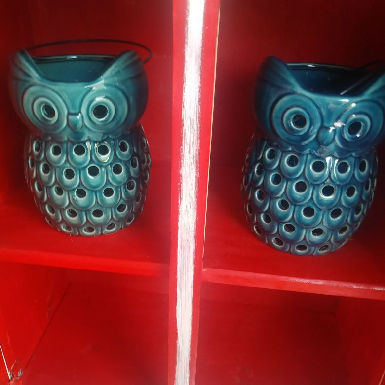 Blue hanging owls