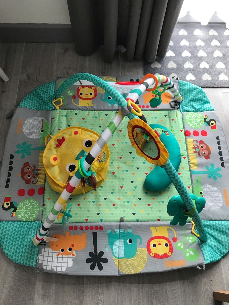 Bright Starts 5 in 1 Ball Activity Play Gym