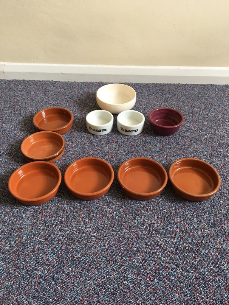 Hamster bowls