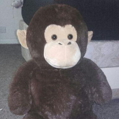 Extra large monkey
