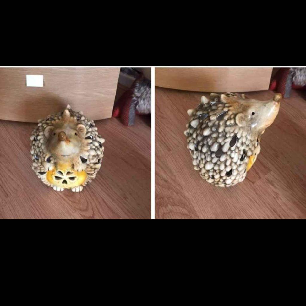 Hedgehog light ceramic
