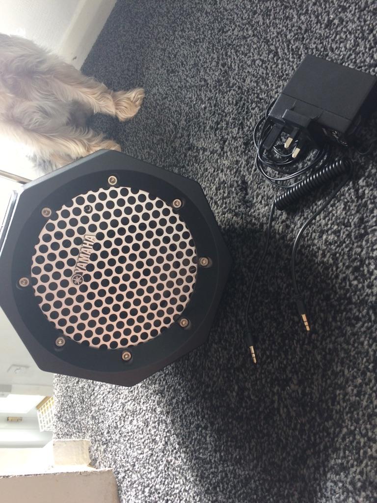 Yamaha pdx-11 speaker