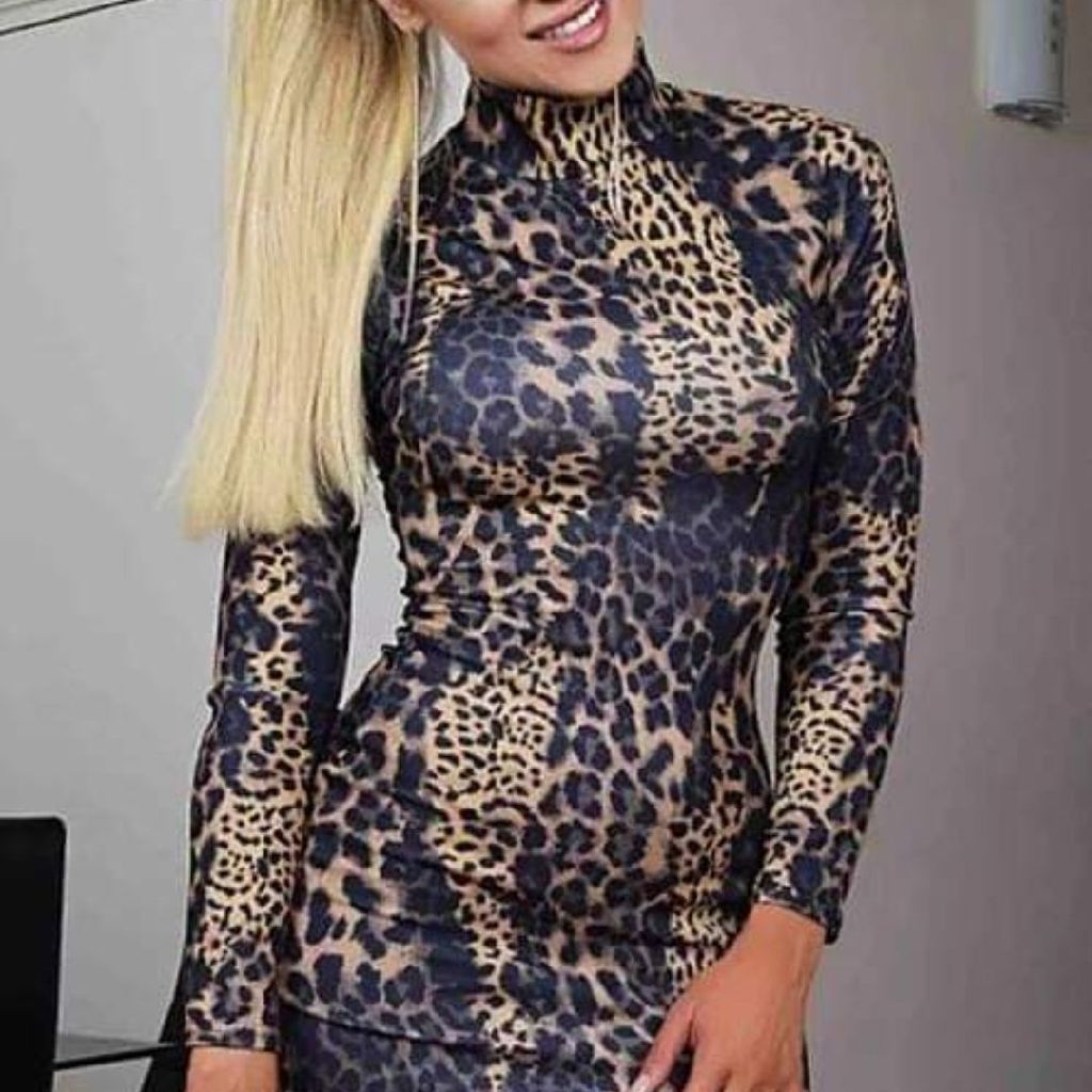 Bella Leopard High Neck Dress
