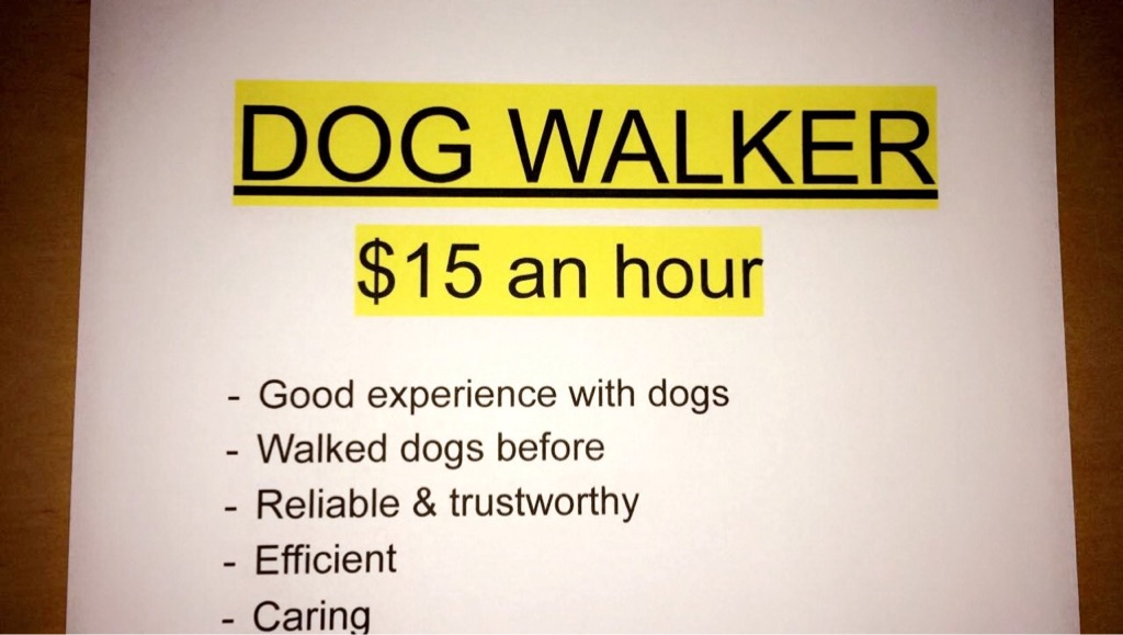 Dog walker in business