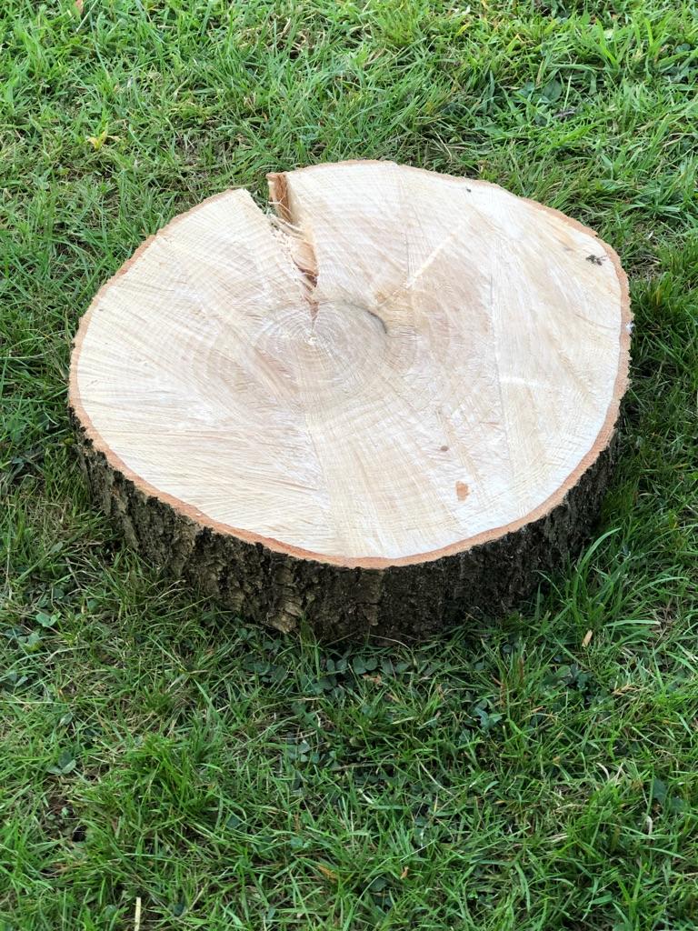 Logs, Logs & Logs