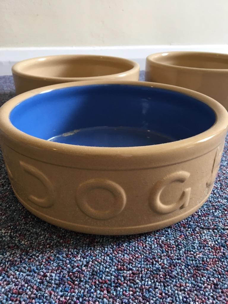 8 mason cash dog bowls village