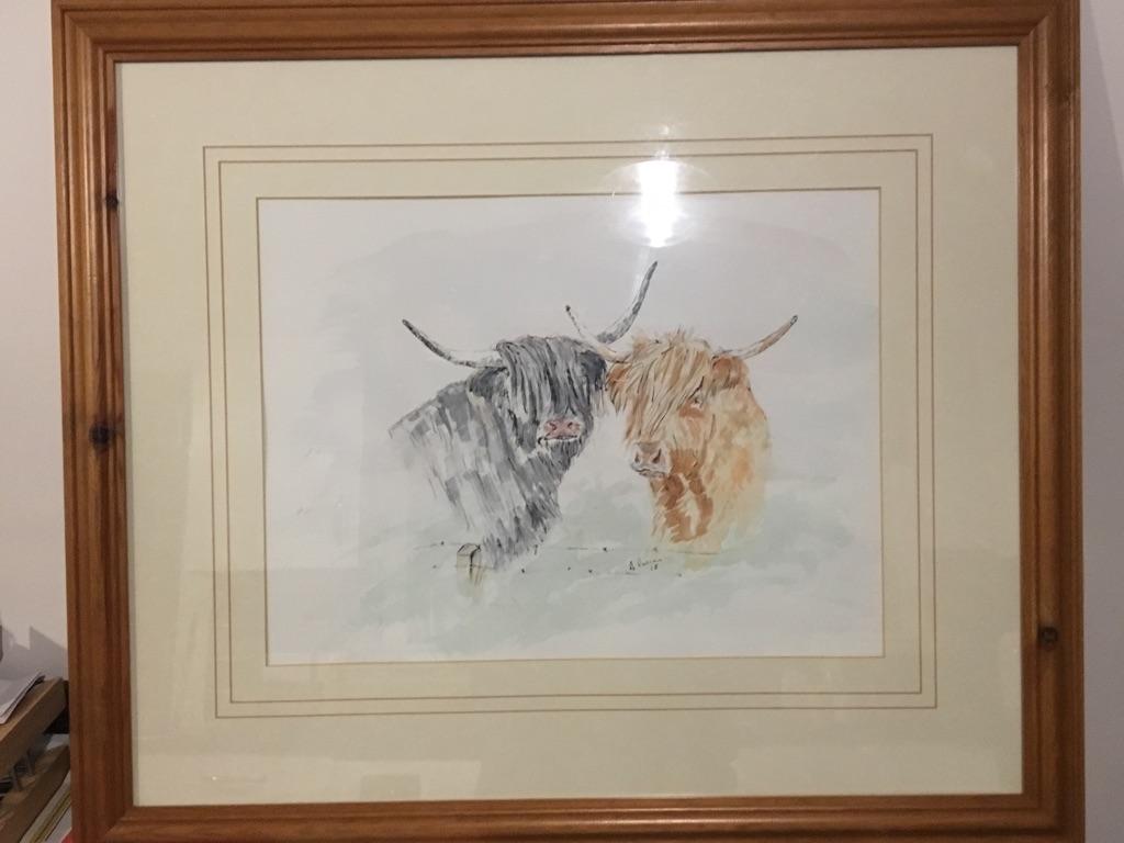 Watercolour highland coos , original work by myself