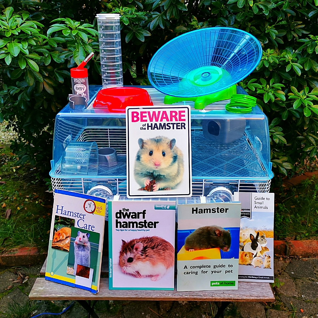 Large dwarf hamster cage and accessories (37.5 x 47 x 55cm)