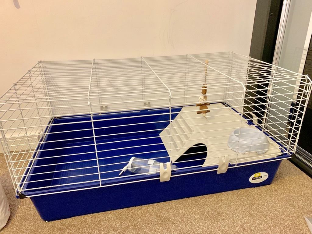 Nearly new Rabbit, bunny, Guinea pig medium cage with water bottle, bowl, and toy perfect starter kit