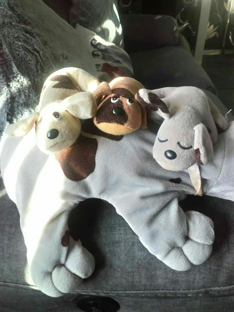 1990s pound puppies with pups